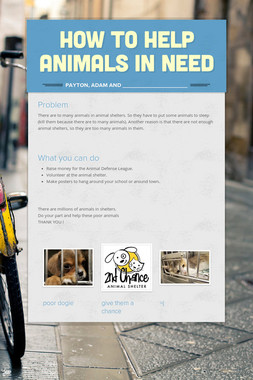 How to Help Animals in Need