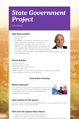 State Government Project