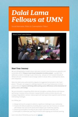 Dalai Lama Fellows at UMN