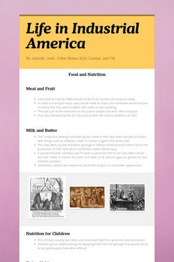 Life in Industrial America