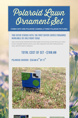 Polaroid Lawn Ornament Set