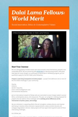 Dalai Lama Fellows: World Merit