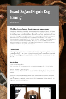 Guard Dog and Regular Dog Training