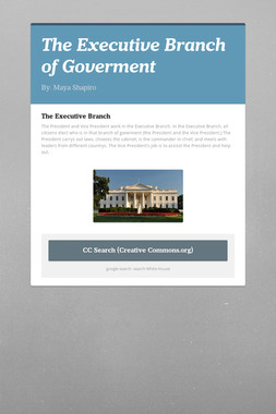 The Executive Branch of Goverment