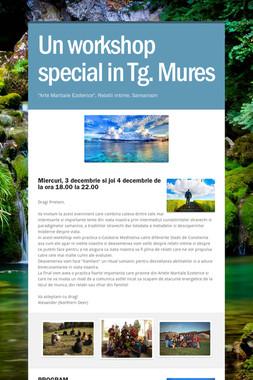Un workshop special in Tg. Mures