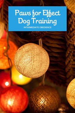 Paws for Effect Dog Training