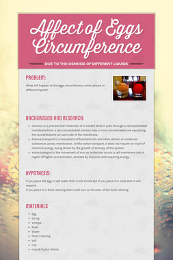 Affect of Eggs Circumference