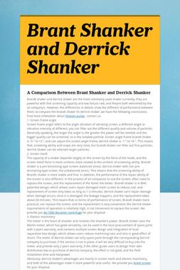 Brant Shanker and Derrick Shanker
