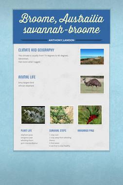 Broome, Austrailia savannah-broome