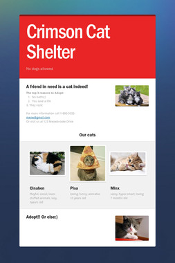 Crimson Cat Shelter