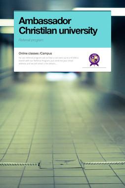 Ambassador Christilan university