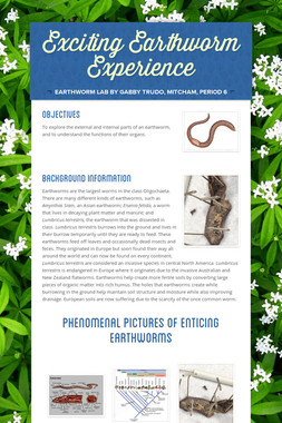 Exciting Earthworm Experience