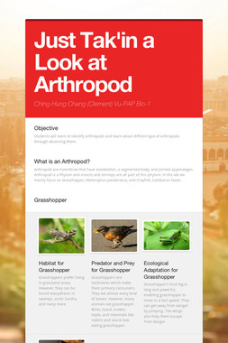 Just Tak'in a Look at Arthropod