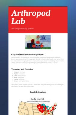 Arthropod Lab