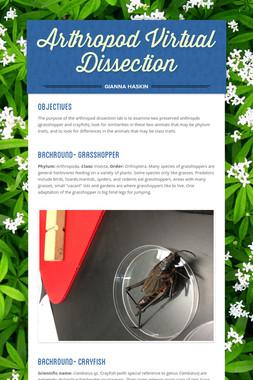 Arthropod Virtual Dissection