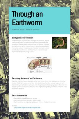 Through an Earthworm