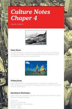 Culture Notes Chaper 4