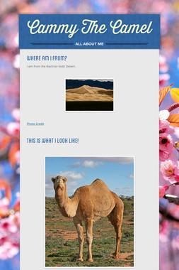 Cammy The Camel