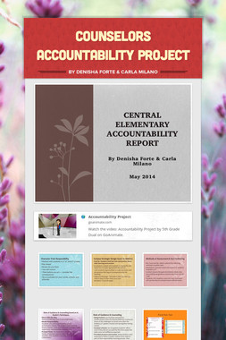 Counselors Accountability Project