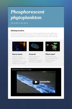 Phosphorescent phytoplankton
