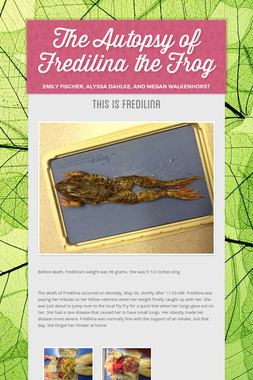 The Autopsy of Fredilina the Frog