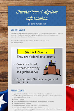 Federal Court System information