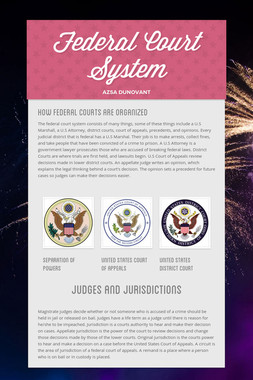 Federal Court System