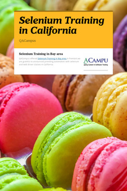 Selenium Training in California