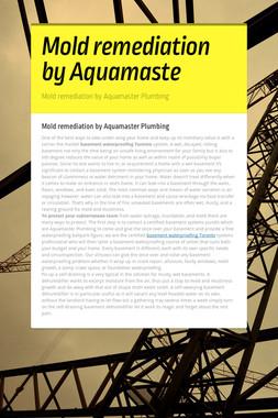 Mold remediation by Aquamaste