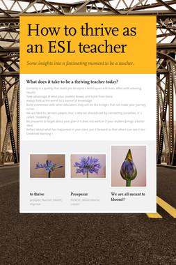 How to thrive as an ESL teacher