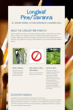 Longleaf Pine/Savanna