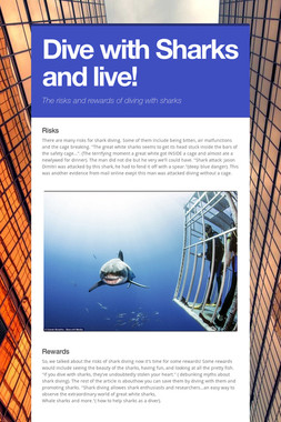Dive with Sharks and live!