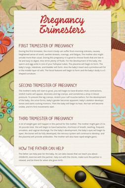 Pregnancy Trimesters