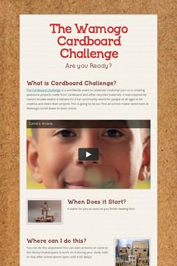 The Wamogo Cardboard Challenge