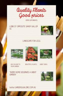 Quality Plants Good prices