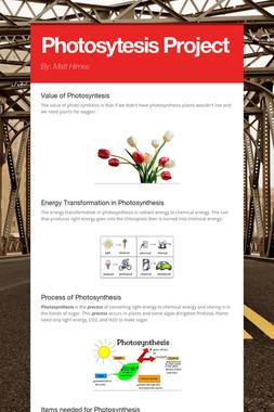 Photosytesis Project