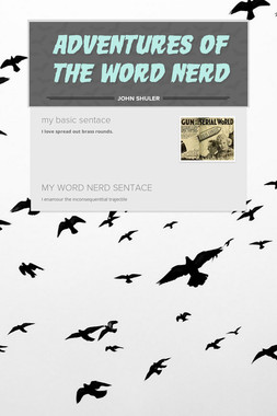 ADVENTURES OF THE WORD NERD