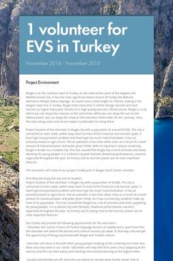 1 volunteer for EVS in Turkey