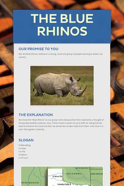 The Blue Rhinos