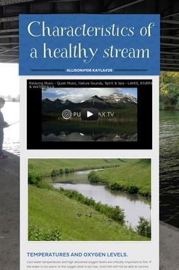 Characteristics of a healthy stream