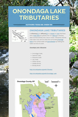Onondaga Lake Tributaries