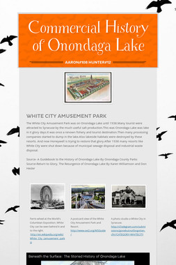 Commercial History of Onondaga Lake