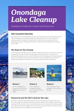 Onondaga Lake Cleanup