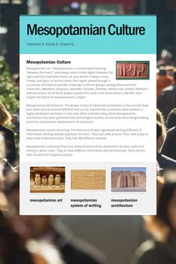 Mesopotamian Culture