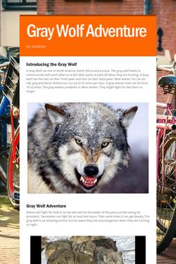 Gray Wolf Adventure