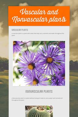 Vascular and Nonvascular plants