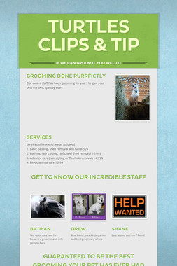 Turtles clips & tip