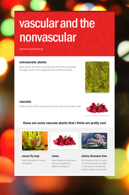 vascular and the nonvascular