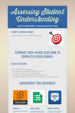 Assessing Student Understanding