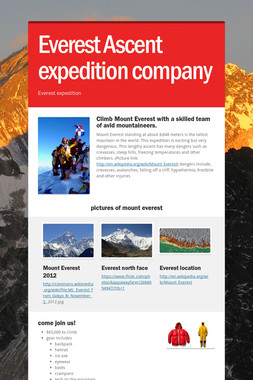 Everest Ascent expedition company